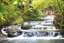 """Costa Rica Destination Wedding / The word """"paradise"""" may have been invented to describe this vibrant country full of stunning beaches, active volcanos, hidden waterfalls, and magical cloud forests. A wedding in Costa Rica is an explorer's paradise."""