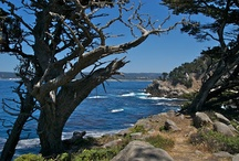 Local Hiking / by Hyatt Regency Monterey Hotel And Spa