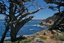 Local Hiking / by Hyatt Regency Monterey Hotel And Spa