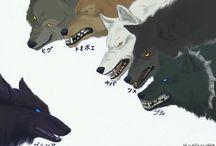 Wolf'slan