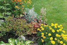 Garden - flower beds & landscaping