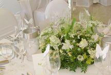 Messe und Event Blumen / Messe und Event Blumen - Dekoration
