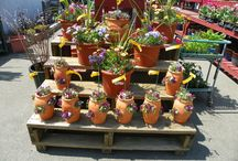 Potted Plant Ideas / Custom designed and planted arrangements by our NYC Green House. Stop by Garden World's Flushing location to see all our potted plants ideas and flower garden ideas.