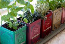 DIY crafts with tea tins