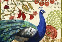 Vokes 12 Vintage birds and butterflyes / Vanhoja piirrettyjä lintuja ja perhosia