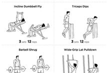 gym routines