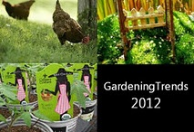 Urban Knights / Garden Trend of 2012 - A growing army of 'urban knights' create oases wherever they can find a patch of earth.  / by Garden Media Group