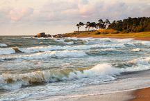Nature Photography-yhteisö-Google+
