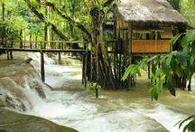 Tree house... / Tad Sae Waterfalls, Nam Khan river, Louangphabang, Laos.  * Photo: Ben Thé Man.