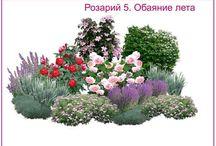 Çiçek peyzaj