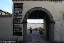 Mostra d'Estate / Ogni anno, nel mese di agosto, presso il Civico Museo del Cavallino della Giara, si svolge la Mostra d'Estate. Un' occasione per ammirare oggetti realizzati per passione da artisti locali e non.