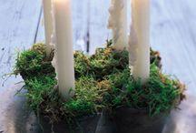 Moss ideas