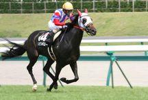 馬アラカルト / いろいろな馬