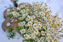 Wedding Natural Chic / Cornice campestre, elementi naturali, tonalità chic per questo matrimonio da sogno. www.chantillyweb.eu
