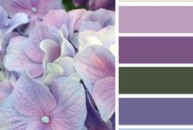 Accostamento colori