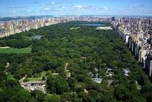 Central Park / by Willie S