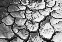 Climate Change News / Our latest blog posts regarding climate change