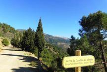 Sunshine Tours Andalusie / Sunshine Tours Andalusie verzorgt fantastische dagexcursies in Andalusië (links en rechts van de stad Malaga) per comfortabele Land Rover voor 2 tot 5 personen met Nederlandse chauffeur en gids. www.sunshinetours-andalucia.eu