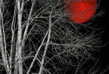 Red Black White