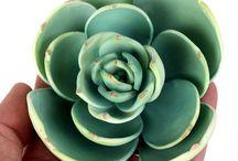 Gumpaste/ sugar flowers