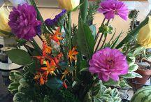 Flowers / Beautiful fresh flower arrangements