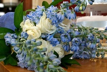 Danielle & Stephen / April 2013 Ivory, baby blue and powder blue, classic, opulent, yet understated