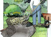 dry creekbed garden