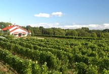 MICHIGAN Wineries / http://www.kazzit.com/