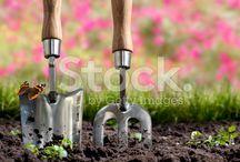 Outdoor & Garden campaign / Trade me