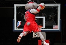 Mystics Mascots / by Washington Mystics