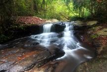 Nature pix we love