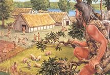 prehistorie boeren. / de cultuur van de boeren uit de prehistorie, en de boeren in nederland