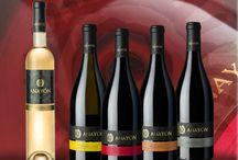 Vinos / En la labor de Embajadores de Cariñena, GRANDES VINOS, elabora vinos para todos los gustos representando en cada uno de ellos lo mejor de la terruño.  As Cariñena Ambassadors, GRANDES VINOS, makes wines for everyone representing in each of them the best of the terroir.