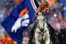 bronco colors are in my blood / by April Collins