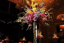 MA Weddings & Events