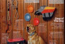 Dog Gear