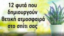 γεωργιαΦΥΤΑ