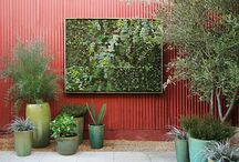 Vertical Garden / by Pamela Dyer