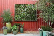 Vertical Garden / by Pamela Dyer