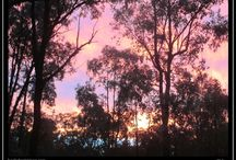 Personal Blog by RJ Simon / A personal blog where I post little musings and photos from time to time about life and living in the Australian bush.