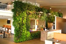 Vertical interior gardens