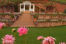 ARQUITETURA E DECORAÇÃO / Pins sobre arquitetura e decoração para você se inspirar. Pins de Piscinas naturais, Playgrounds criativos, Fachadas incríveis, Jardins lindos e etc...