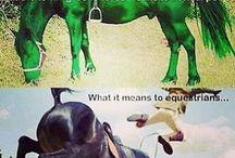 HorsePuns