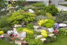 Záhradkári