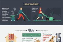 Pet health/Tips and Pet Safety / Learn some valuable health tips for your pets!