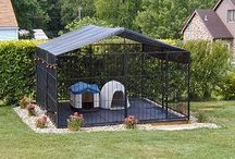 DOG KENNELS AND ACCESORIES / by Lucy Melendez
