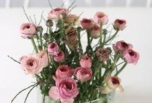 Floral Designe