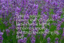 Lavender & Palmarosa Aromatherapy Candles