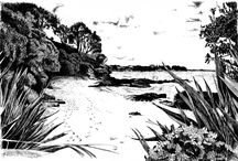 Illustrations: pen & ink, pencil sketches and digital drawing and inking. / Original pen and ink sketches and illustrations done on paper, the traditional way as well as digitally on a Wacom tablet. http://www.mn8designsource.co.nz