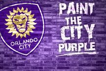 Sports / Our favorite sports teams in Orlando!